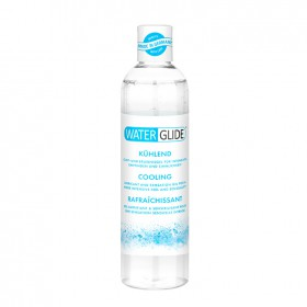 WATERGLIDE FRÍO 300 ML